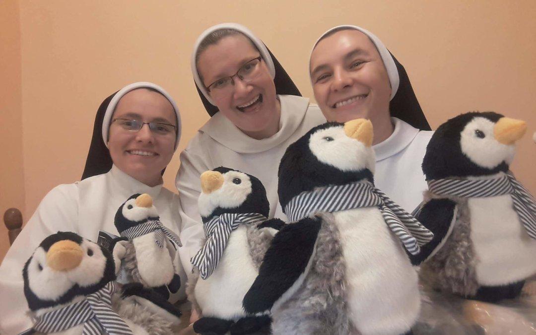 """Dominikanki udają pingwiny. """"Chcemy zrobić wszystko, by nasi synowie mieli dom"""""""